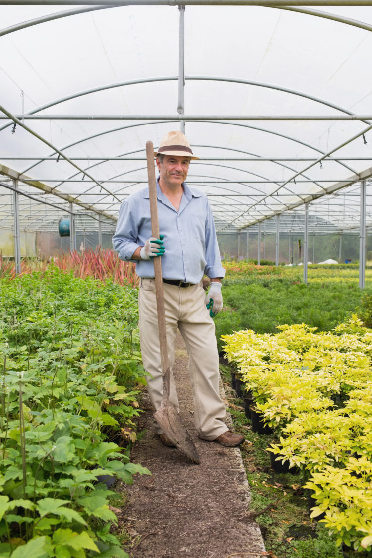 Gardener holding a spade while smiling and standing in greenhouse