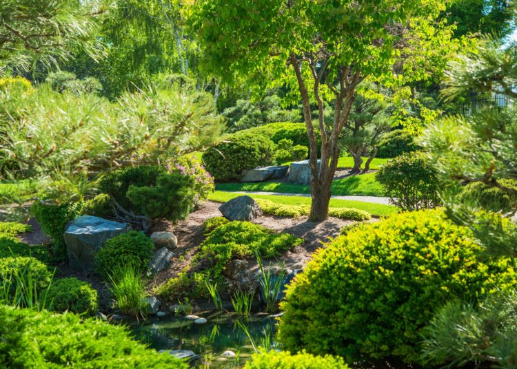 Japanese Garden in Spring with Many Different Plants. Peace and Calm Garden.